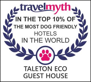 travelmyth dog friendly